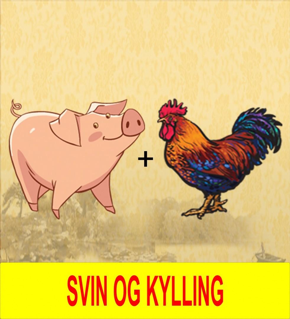 11. Kylling &_svin