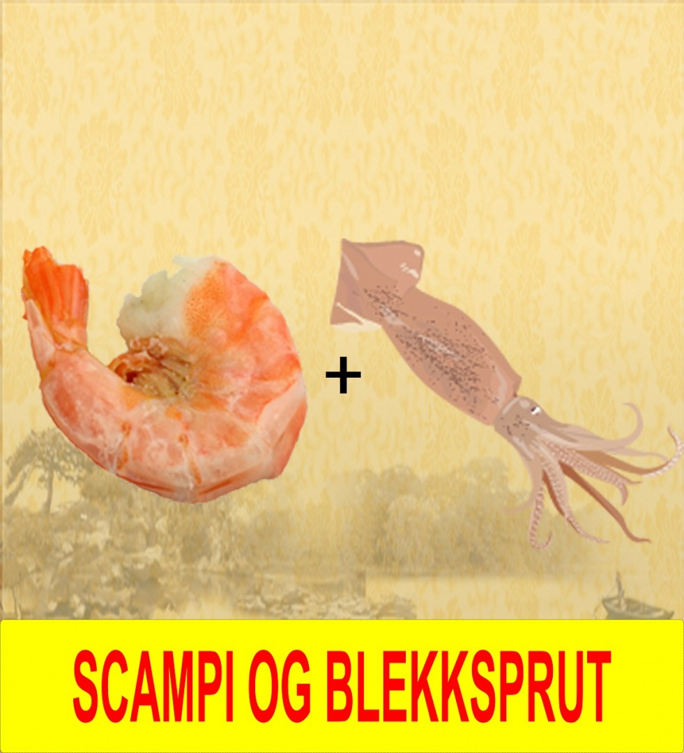 16. Scampi &_blekksprut